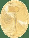 cap with 1 vertical axe