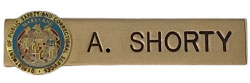 DEPARTMENT OF PUBLIC SAFETY NAME PLATE